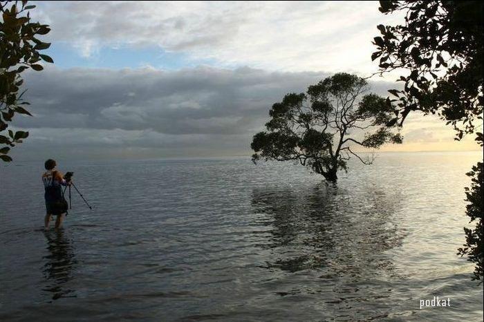 Красивый восход солнца на озере