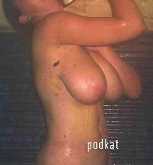 О женской груди