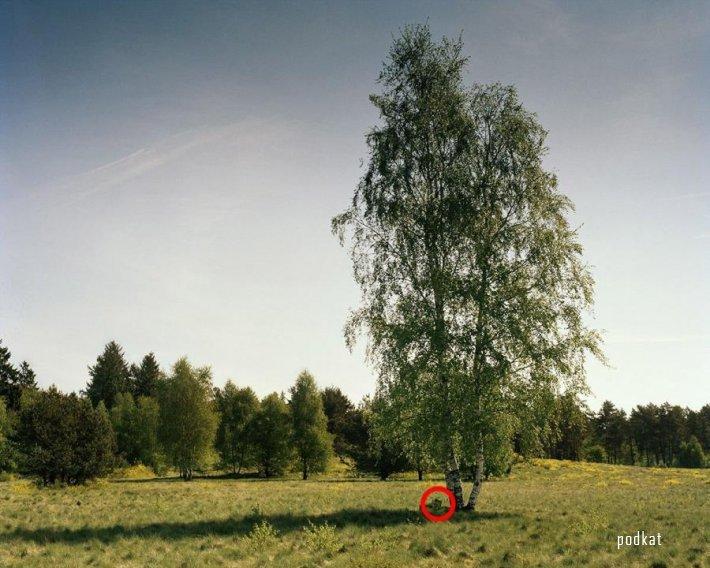 Маскировка снайперов немецкой армии